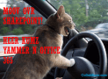 10 Ways SharePoint is Taking the Backseat, Office 365 and Yammer are Driving